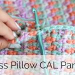 The Moss Pillow Crochet Along – Part 4 of 5